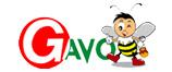 Gavofarms China